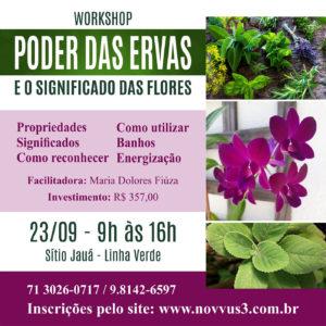Workshop Poder das Ervas e Flores Novvus Educação