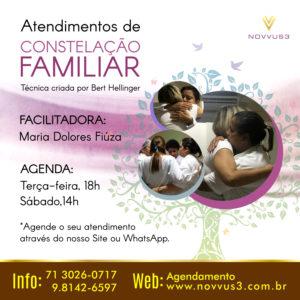 Atendimento de Constelacao Familiar Novvus3 Educacao Bahia